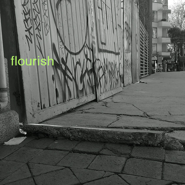 Maybe, Maybe; flourish